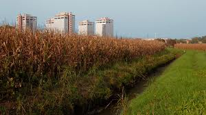 Parco agricolo sud, fermare l'abbandono di rifiuti pericolosi