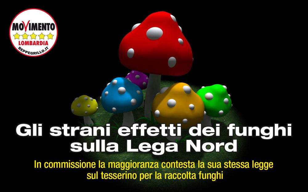 Tesserino Raccolta funghi, la Lega ha contestato la sua legge
