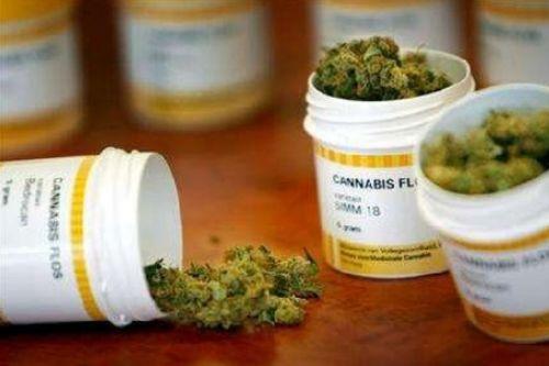 Cannabis terapeutica, sì a odg del M5S Lombardia