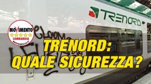 frame-copertina-Trenord