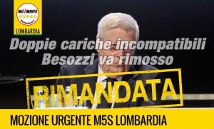 Besozzi2