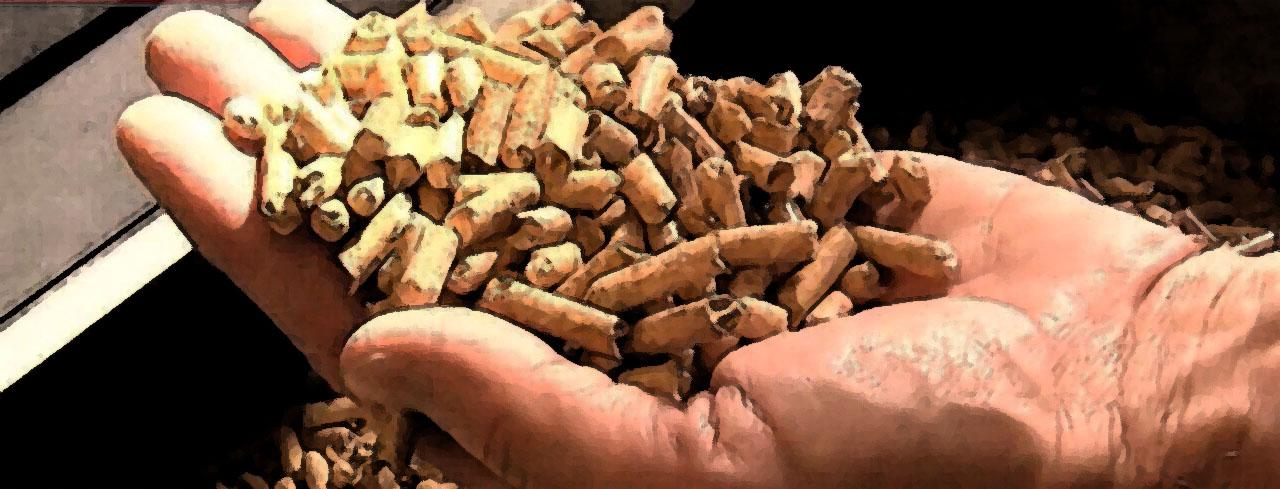 Il TAR dice NO alla centrale a biomasse a Castelleone!