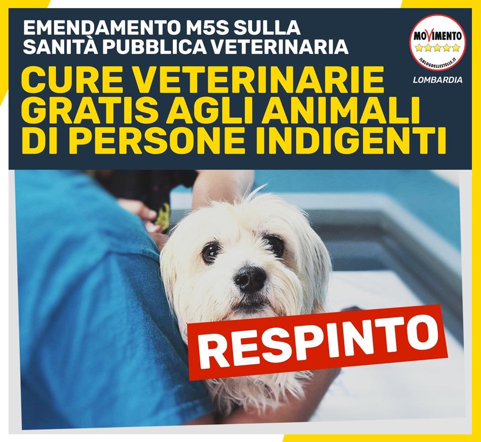Cure veterinarie gratuite agli animali d'affezione di chi è in difficoltà, no del centro destra