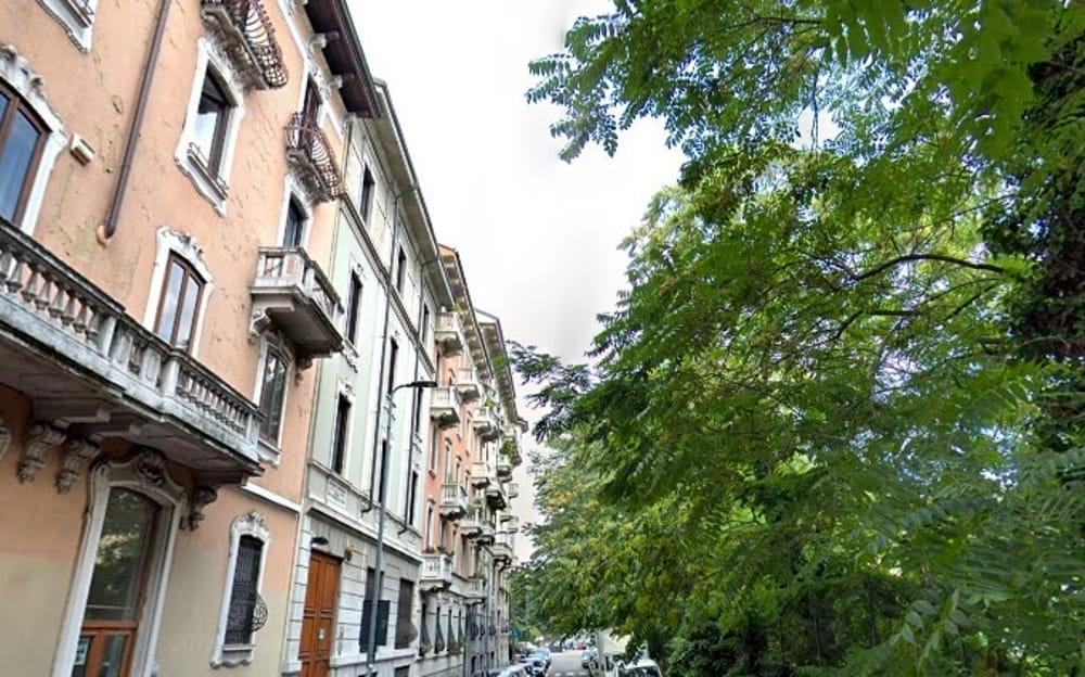 Milano, salviamo gli alberi di via Filarete.
