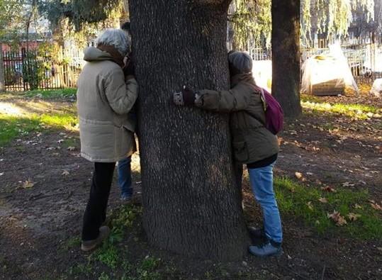 Via Bassini: salviamo il parco e ripartiamo con un progetto condiviso